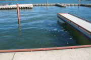 Photo: B003, Boat Slips